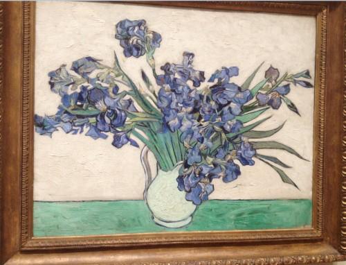VvG Irises